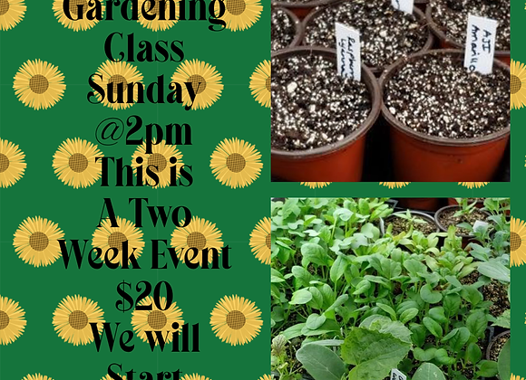 Gardening 101  - Come start some seeds! (2/28 and 3/7@2pm)