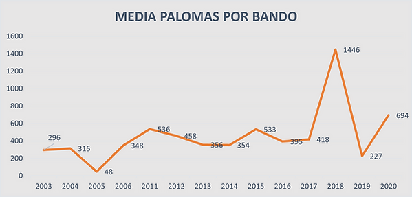 graf 5 media.png