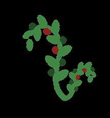 olive brehcn site [Recovered]-01.png