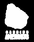 logo brnaco-01.png