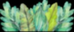 FAVPNG_leaf-amazon-rainforest-watercolor