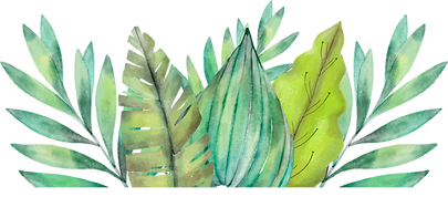 FAVPNG_leaf-amazon-rainforest-watercolor