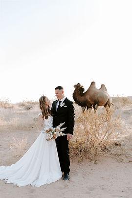 Camel Safari Desert Elopement with Starr