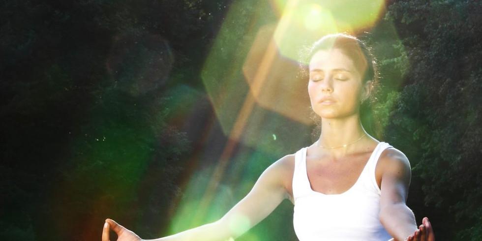 Shamanic Meditation Circle