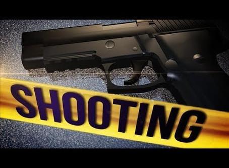 Shooting / Suicide