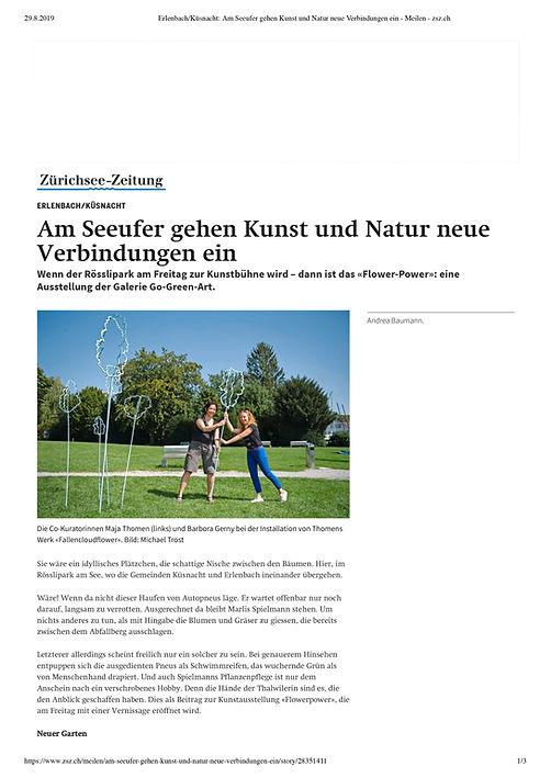 artikel erlenbach.jpg