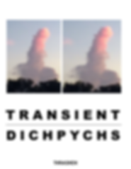 Book_5_Transient_Dich.png