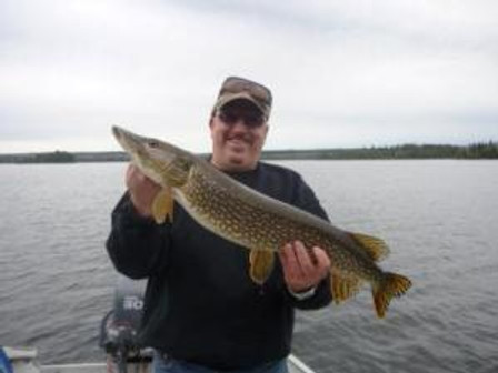 Mike's northern