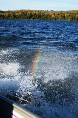 rainbowwake