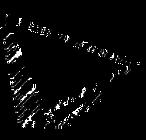 Polygon 4