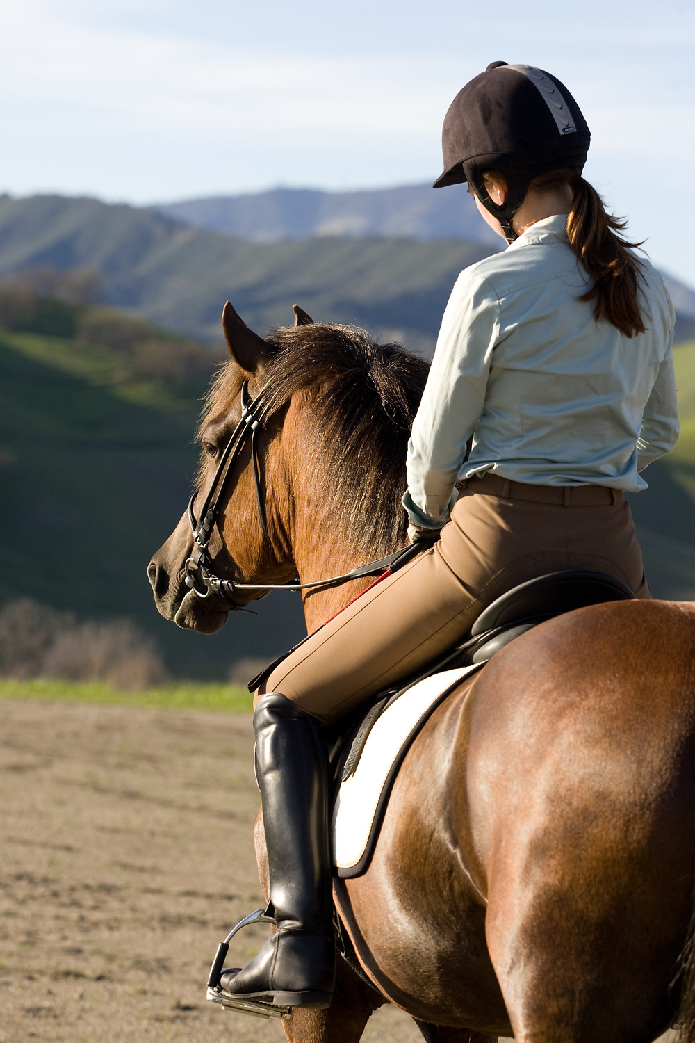 Make your horse a willing partner
