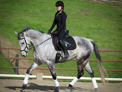 OTTB schooling with student
