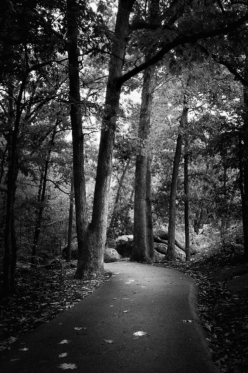 Path at Elephant Rocks