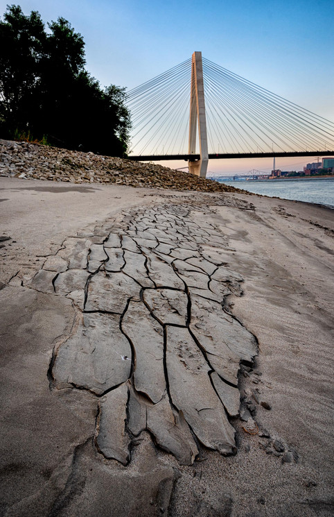 Dryness of Summer_JenniferMishra.jpg