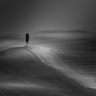 Dramatic B&W Landscapes Gallery