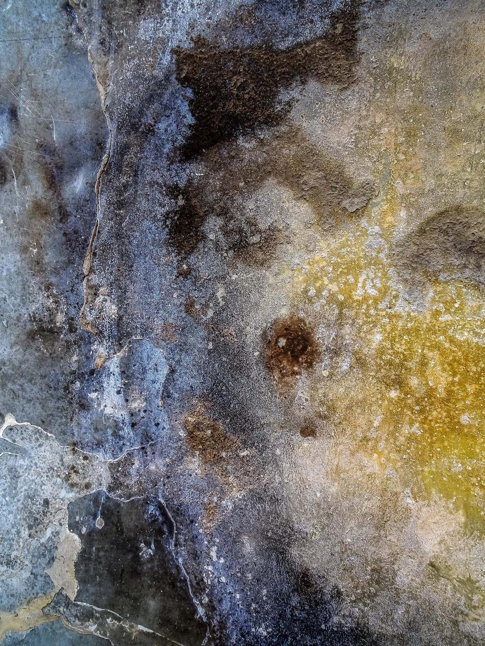 Splatter Art 191