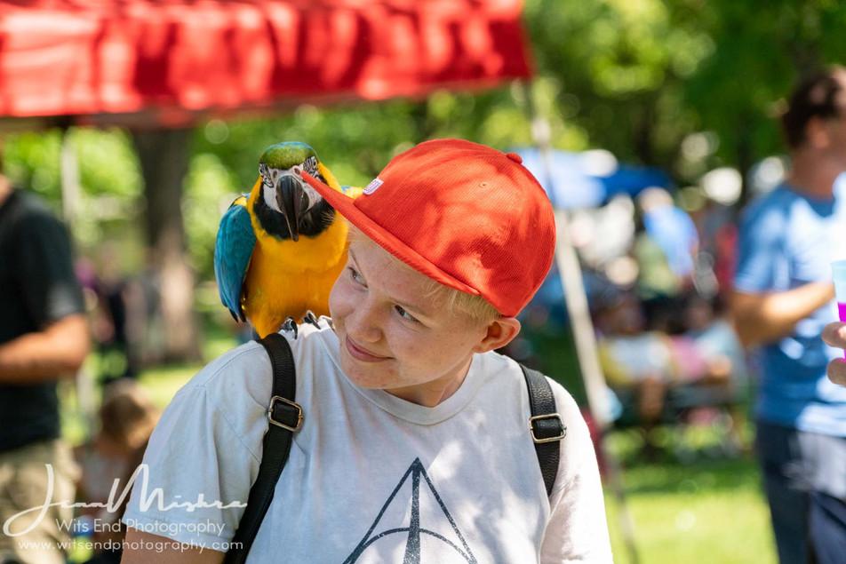 City Wide Fair Tower Grove Park 2019 145