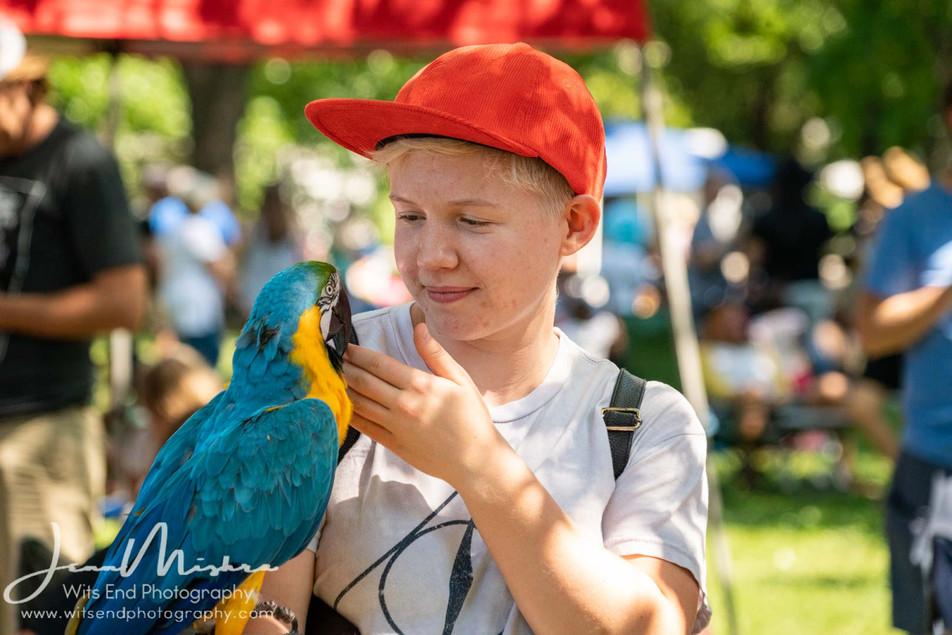 City Wide Fair Tower Grove Park 2019 143