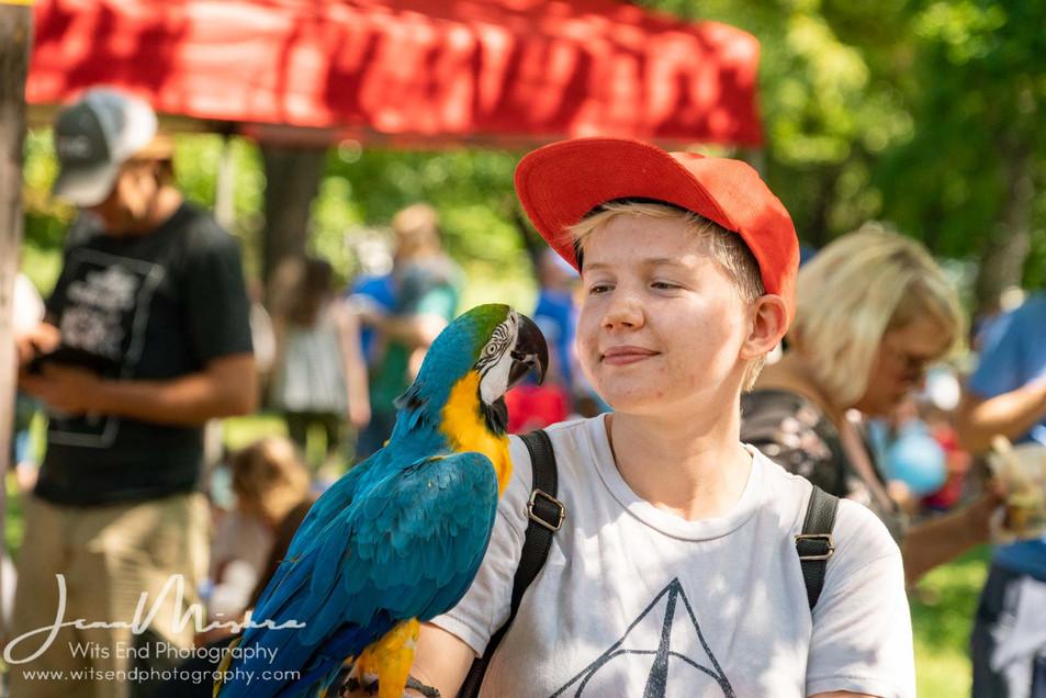 City Wide Fair Tower Grove Park 2019 140