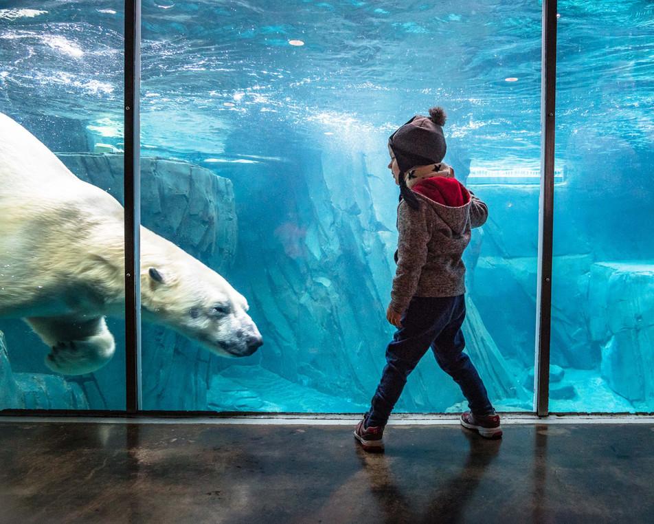 Zoo 2-3.jpg