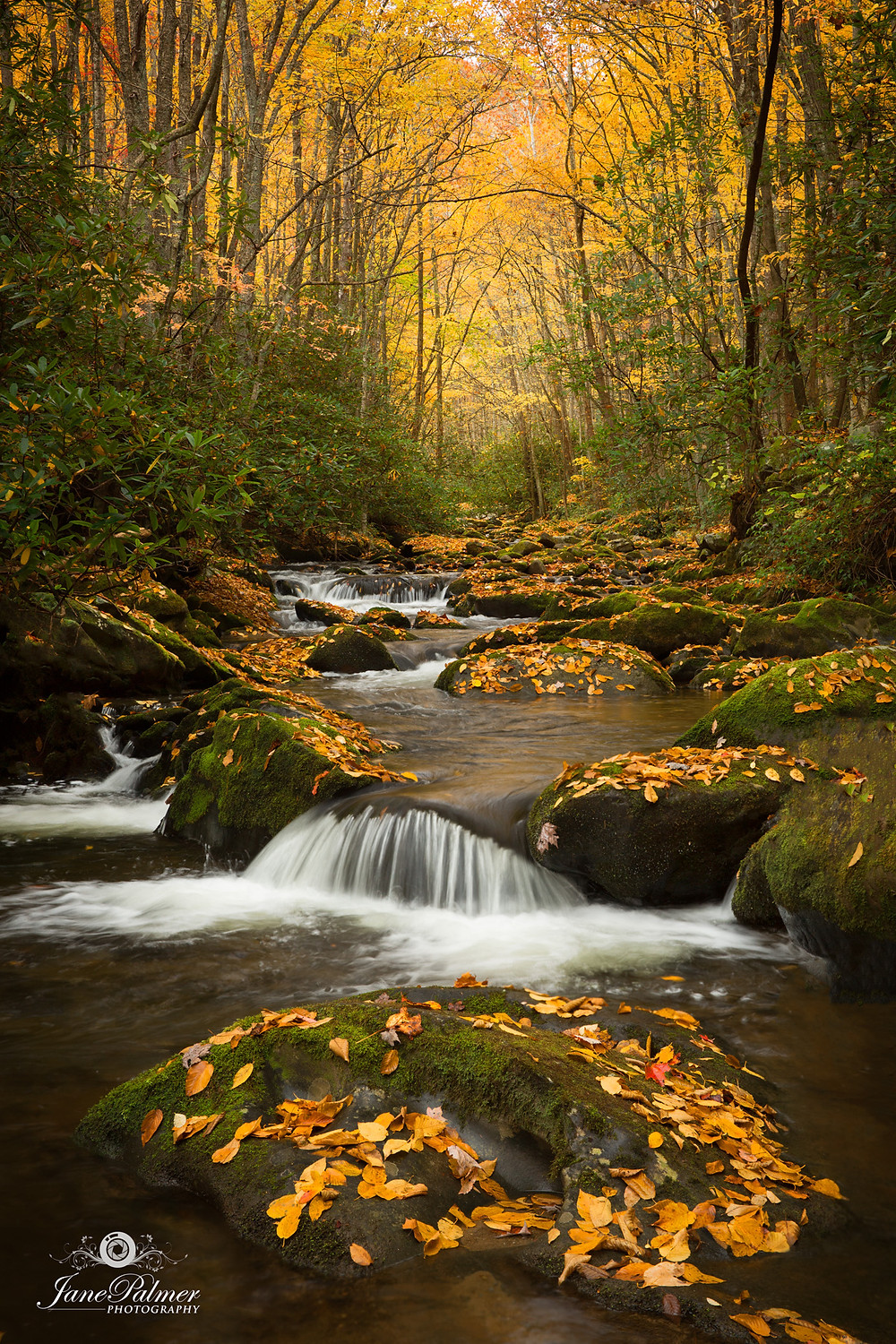 Photo waterfalls autumn smoky mountains