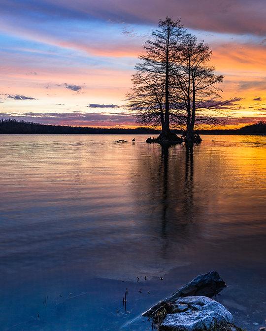 Busch Conservation Area Sunrise 2nd Impo