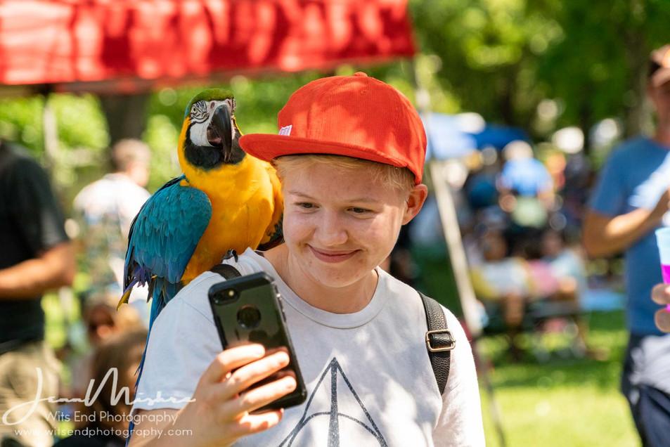 City Wide Fair Tower Grove Park 2019 146