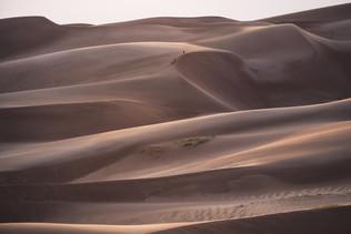 Trekking the Dunes