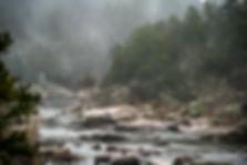 Millstream Gardens foggy stream
