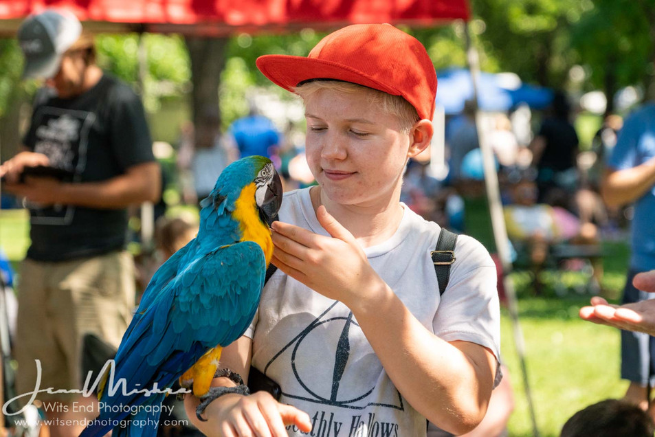 City Wide Fair Tower Grove Park 2019 142