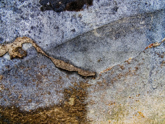 Abstract Texture Gallery