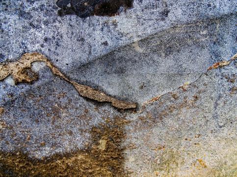 Splatter Art 185
