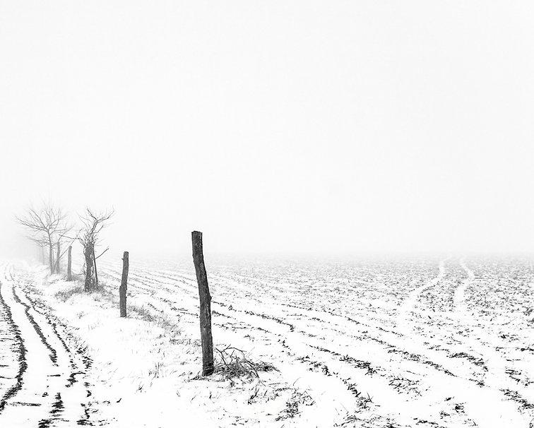 Foggy Winter Morning 11 Web-2.jpg