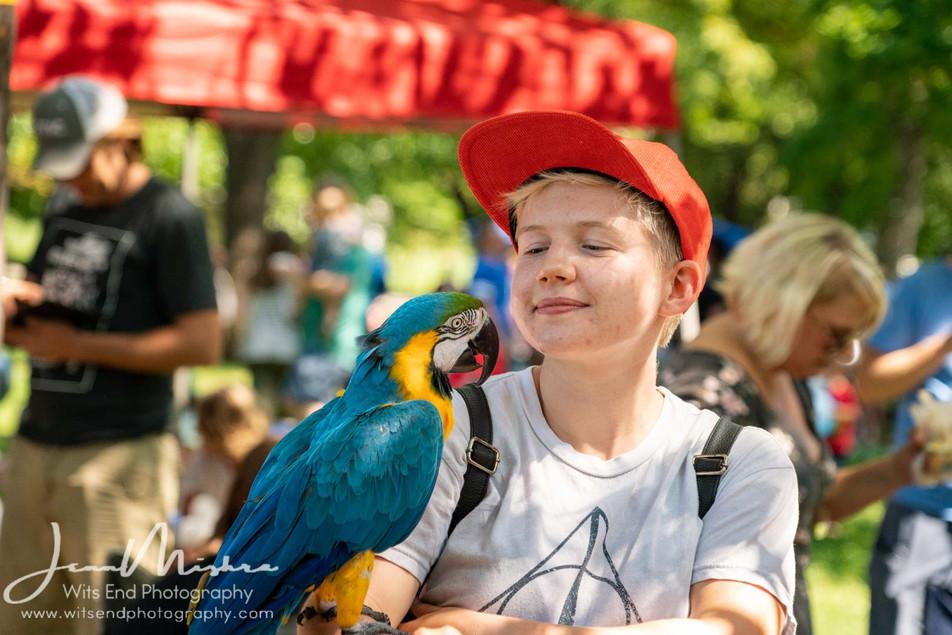 City Wide Fair Tower Grove Park 2019 141