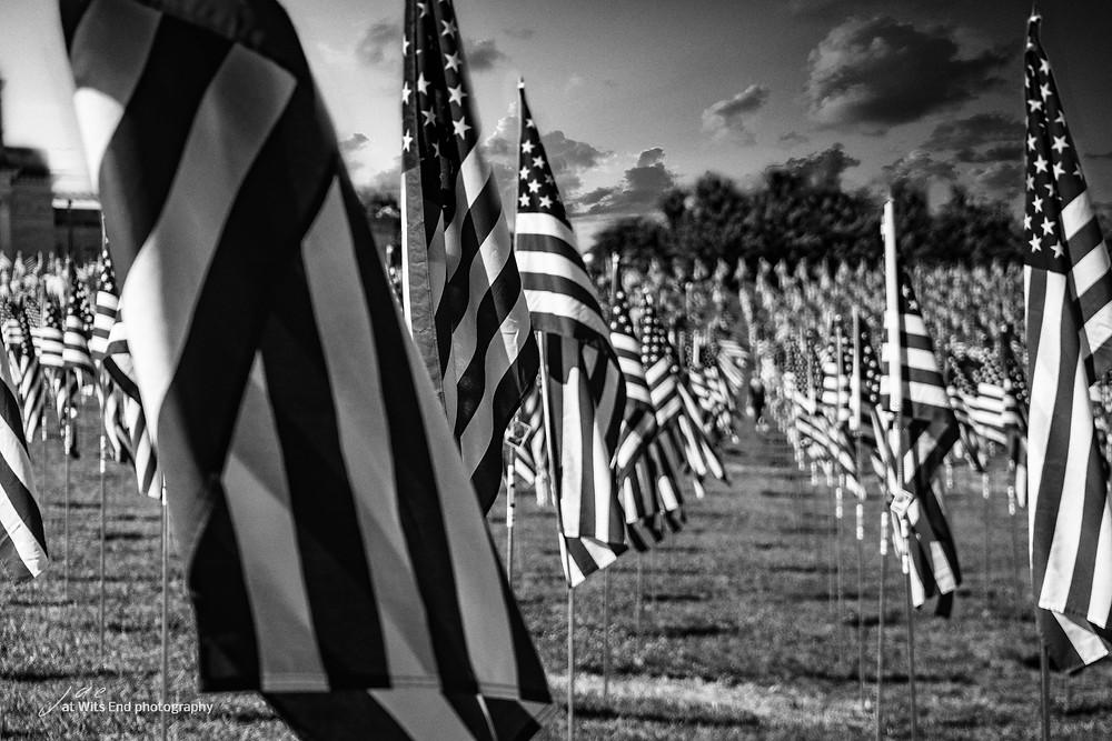 Flags Black & White