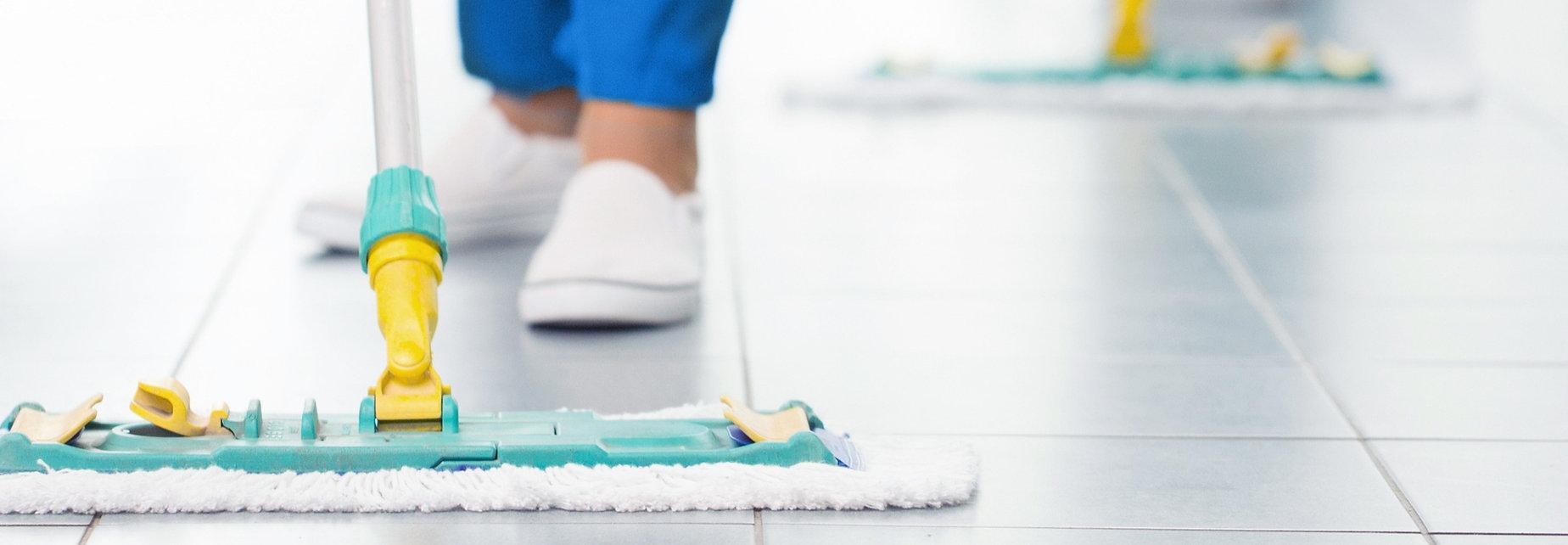 limpeza e organização cliente oculto bzoros
