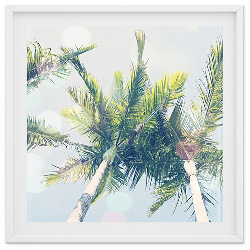 Palm Trees and Bokeh -print or canvas wrap