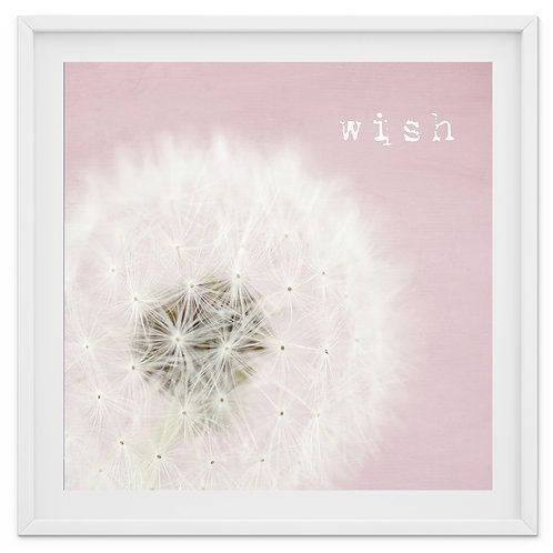 Pink Wish - dandelion print or canvas wrap