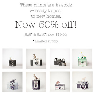 """Selection of 'Little Animals' and 'Little Aussies"""" on sale, in stock and shipping free worldwide"""