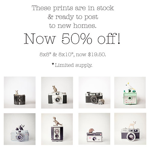 SALE Selection of 'The Little Aussies & Animals' prints in stock & ready to ship
