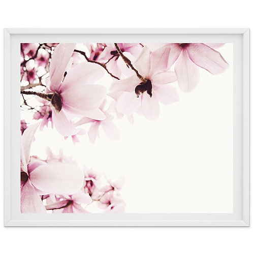 Sweet Sweet Spring