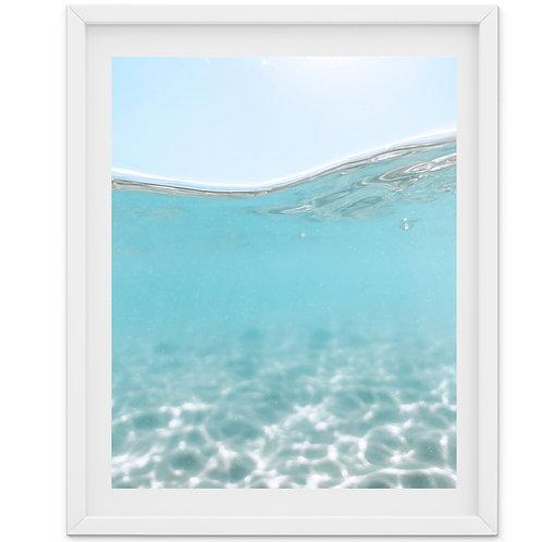 Immerse - ocean underwater photography