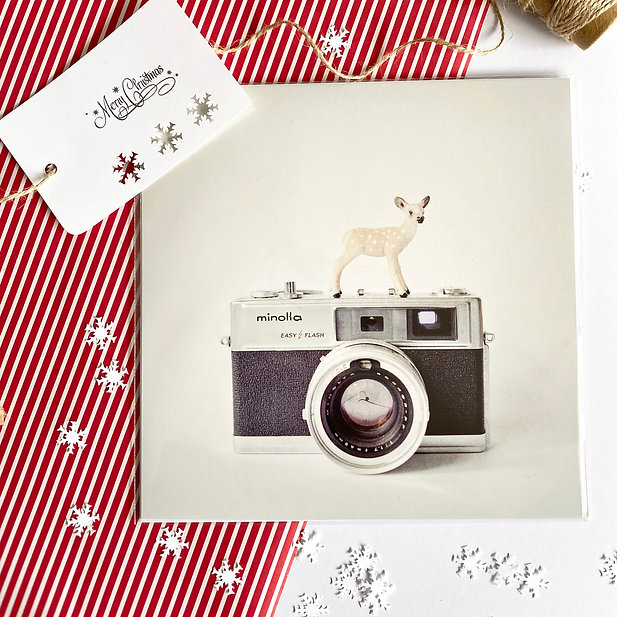 The Deer and the Minolta 8x8 print  with