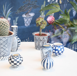 Designed/produced fabrics/pots for the window dispay.