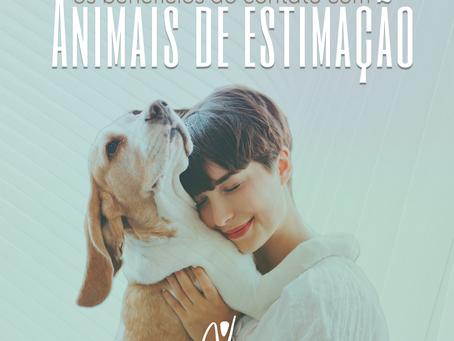 Os Benefícios do Contato com Animais de Estimação