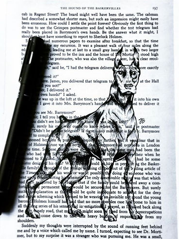 Hound of the Baskervilles. _I sketched t