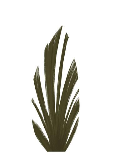 Assets_PlantsA.JPG