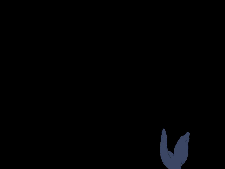 0602_Anim_BirdsUpA08.png