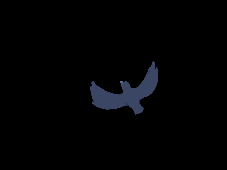 0602_Anim_BirdsUpA21.png