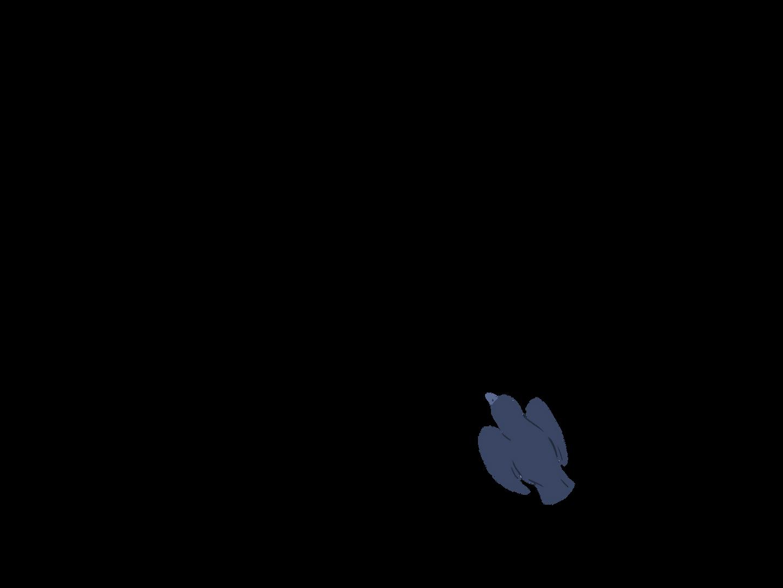 0602_Anim_BirdsUpA16.png